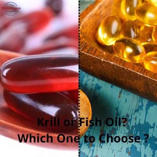 Krill or Fish Oil? Choose which?